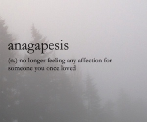 quotes and anagapesis image