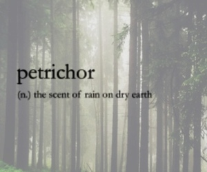 earth, rain, and scent image