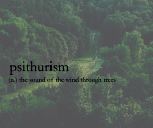 tree, definition, and quotes image