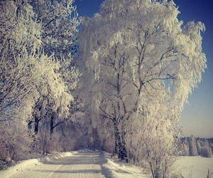 nature, snow, and love image