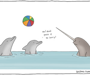 dolphin, funny, and ball image