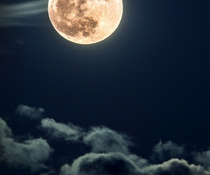 moon, night, and passion image