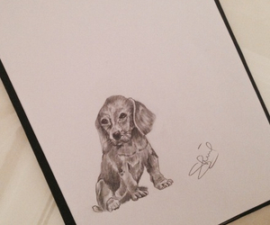 dog, easy drawing, and cute image
