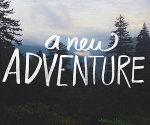 adventure, new, and forest image