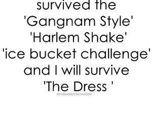 funny, the dress, and survive image