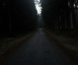 forest, dark, and relax image