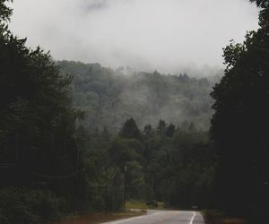 dark, forest, and road image