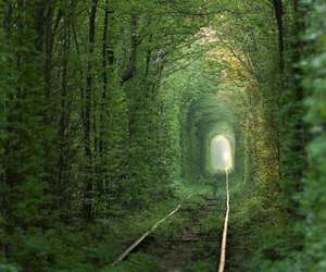 tunnel, nature, and tree image