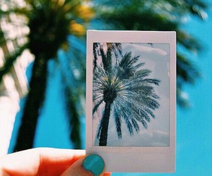 summer, blue, and photography image