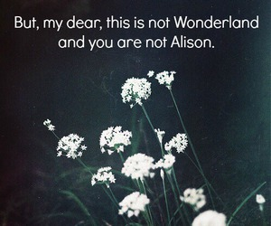 alison, quote, and quotes image