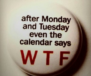 wtf, monday, and funny image