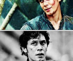 bellamy, the hundred, and the 100 image