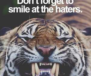 haters, smile, and quote image