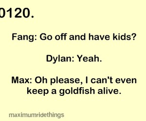 dylan, quotes, and fang image
