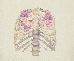 flowers, rose, and bones image