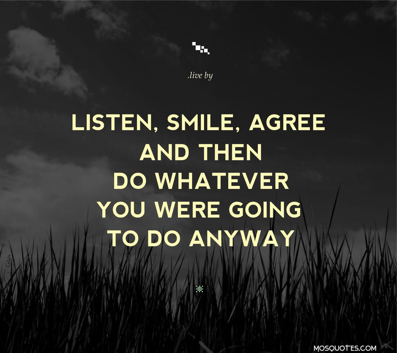 Listen Smile Agree And Then Do Whatever You Were Going To Do