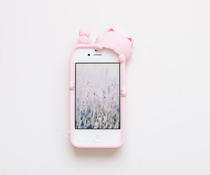 cute, case, and cat image