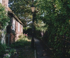 green, trees, and Houses image