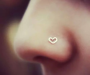 piercing, heart, and nose image