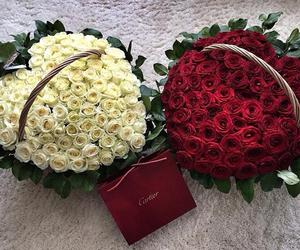 love, rose, and cartier image