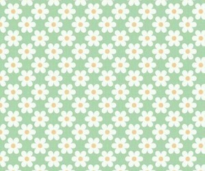 daisy, green, and simple image