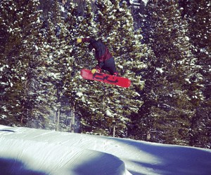snowboarder, snowboarding, and shred bots image