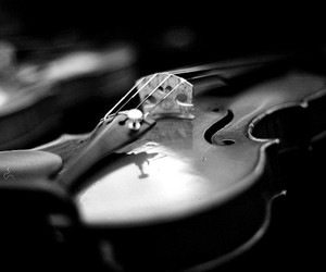 violin, music, and vintage image