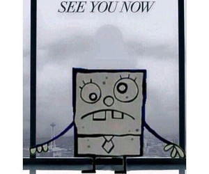 funny, fifty shades of gray, and spongebob image