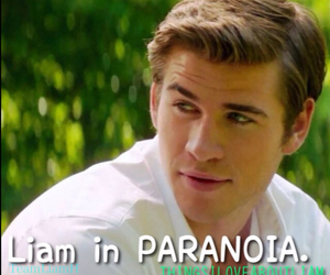 paranoia, liam hemsworth, and things i love about liam image