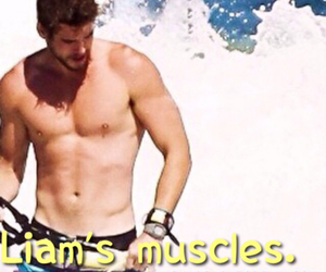 muscles, liam hemsworth, and things i love about liam image