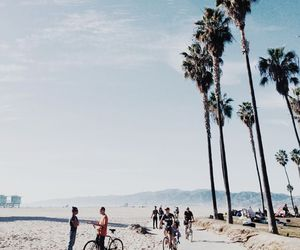 beach, summer, and los angeles image