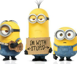 minions, stupid, and yellow image