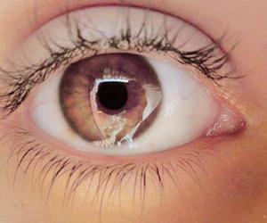 brown eyes, eye, and photography image
