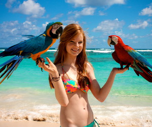 girl, beach, and parrot image