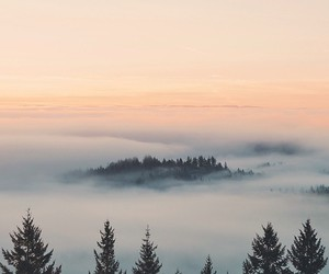 beautiful, clouds, and fog image