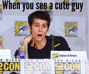 funny, lol, and dylan o'brien image