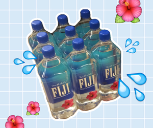 fiji, hipster, and water image