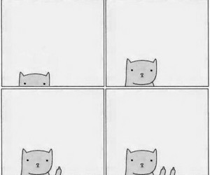antisocial, black and white, and cat image