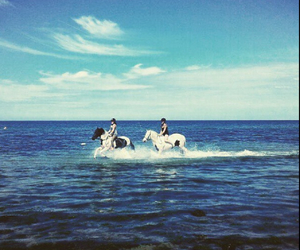 beach, beautiful, and equestrian image