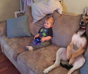dog, funny, and baby image