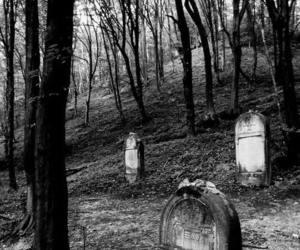 black and white, cemetery, and dark image