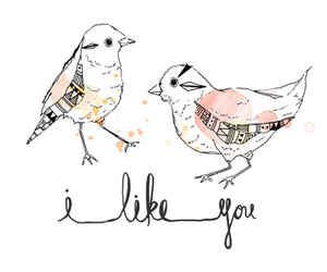bird, i like you, and art image