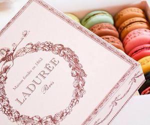 colors, food, and macarons image