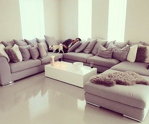 nature, sofa, and space image