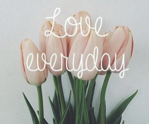 beautiful, everyday, and flowers image