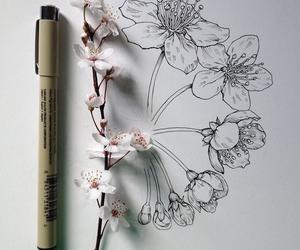 flowersinprogress image