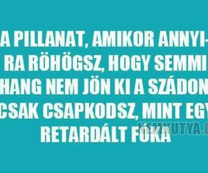 true and magyar image