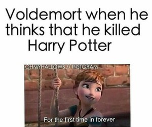funny, harry potter, and laugh image