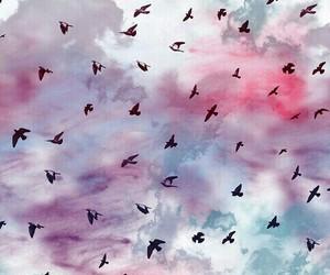 bird, wallpaper, and sky image