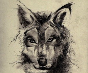 animal, wolf, and back tattoo image
